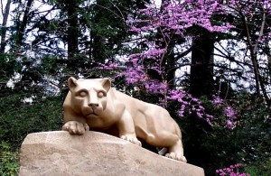 Spring Lion