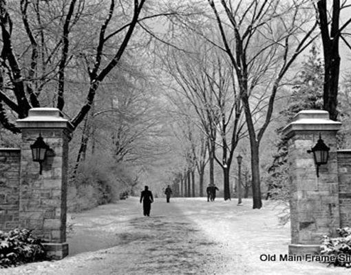 Main Gate Winter