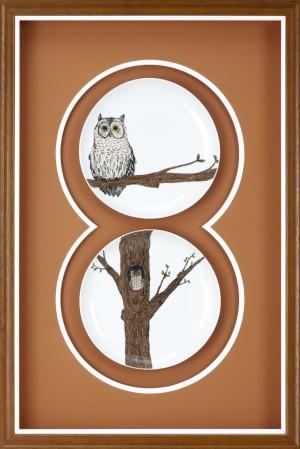 Wren 578144_Confetti 115653_owl plates