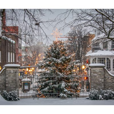 State College Christmas Tree Archives | Old Main Frame Shop & Gallery